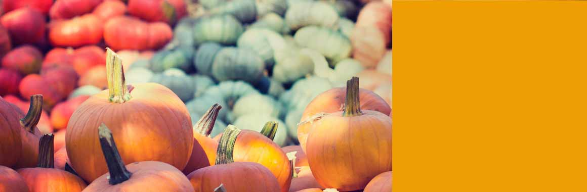 pumpkins tomatoes