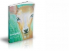 Deer Lightful - childrens yoga of Dru Yoga's Energy Block Release 1, by Suzanna Thell, illustrated by Yuti MacLean