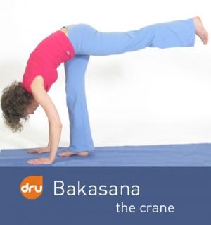 yoga-pose-crane