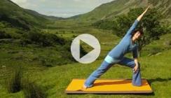 Bhima posture
